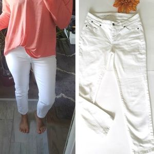 TALBOTS SIGNATURE ANKLE JEANS